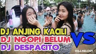 Jangan Kasih Ampun DJ Anjing Kacili vs Udah Pada Ngopi Belum Vs Despacito Remix Enak Sedunia 2018