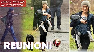 WELCOME HOME PRINCE HARRY! Smiling Meghan Markle takes Baby Archie and dogs for a walk in the woods