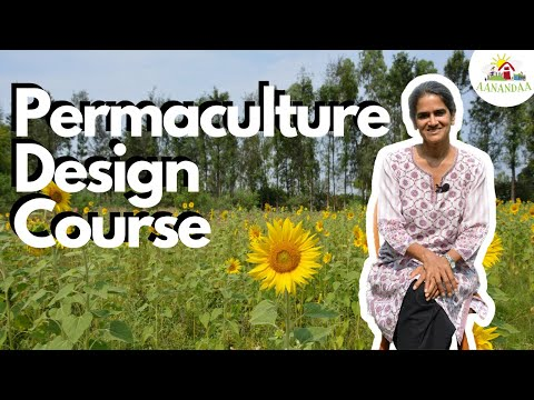 Everything you need to know about a Permaculture Design Course (PDC)!
