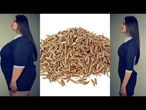 Die Behandlung der Würmer vom Strom