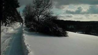 preview picture of video 'Winterspaziergang 2010.wmv'