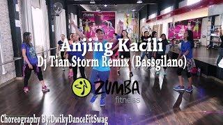 Anjing Kacili Remix  By Tian Storm (Bassgilano) (Choreography)   At BFS Studio (Zumba)