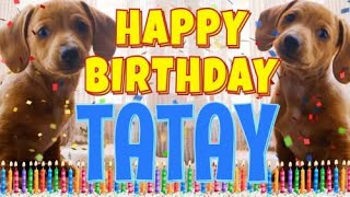 Happy Birthday Tatay! ( Funny Talking Dogs ) What Is Free On My Birthday