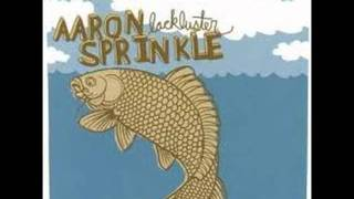 Aaron Sprinkle - What Sorry Could Be