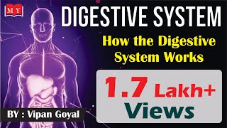 Digestive System || How The Digestive System Works || By Dr. Vipan Goyal