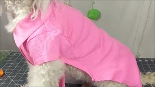 how to make dog clothes out of old shirts