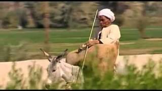 مازيكا صباح الخير يا مصر - عمرو مصطفى تحميل MP3