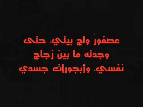 طائر الحرية وقلمي 2012 /رشا السرميطي