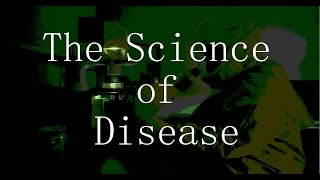 The Science of Disease: World War Z (2013) vs. Contagion (2011)