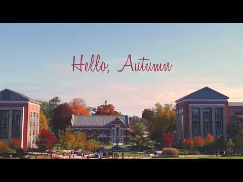 Welcome to Autumn, UConn Nation