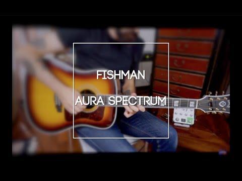 Amplificare BENE la chitarra acustica: Fishman Aura Spectrum!
