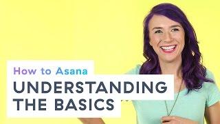 How to Asana: Understanding the Asana basics