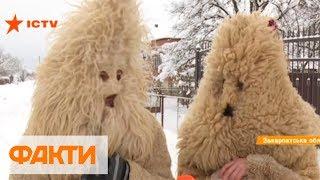 Рождество на Закарпатье: обычаи и традиции