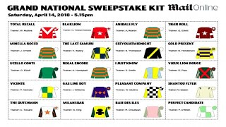 Grand National Sweepstake: Your Essential Kit For The 2018 Race!