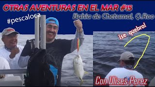preview picture of video 'JUREL ROMPE CAÑA en la Bahía de Chetumal #15'