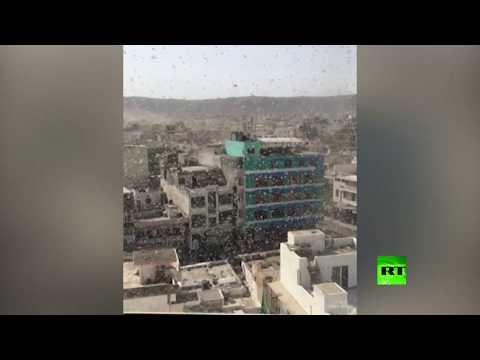 العرب اليوم - شاهد: أسراب الجراد تغزو 5 ولايات هندية وتفتك بكل ما في طريقها