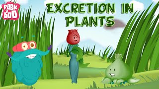 Plants - Excretion Process