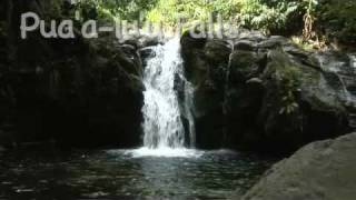 preview picture of video 'Pua'a lu'u Falls Virtual Maui Guide'