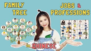 Let's Learn Chinese Family Tree / Jobs & Occupations in 20 minutes!