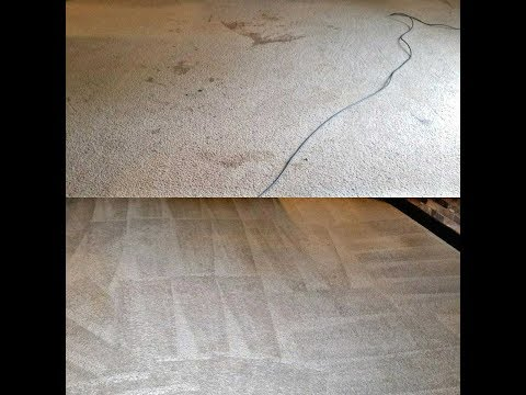 Steam Cleaning Carpet - Is is Worth It?  Before / After Video