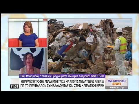 Σπατάλη τροφίμων   88 εκατ. τόνοι τροφίμων ετησίως καταλήγουν στα σκουπίδια   29/09/2020   ΕΡΤ
