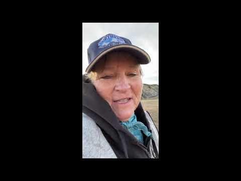 Re-Red Video: November 24 – December 7, 2020