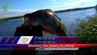 Рыбалка в Казахстане обзор № 62 июнь 2018/GGGKaiSer/Astana/летняя рыбалка