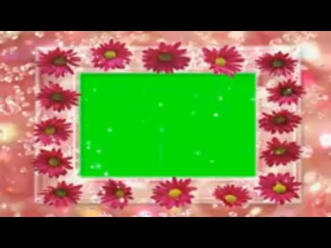 Wedding Green Screen Frame with Flowers Falling Background