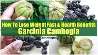 Garcinia Cambogia For Weight Loss & Health Benefits -  Lose Weight With Kudampuli - Malabar Tamarind