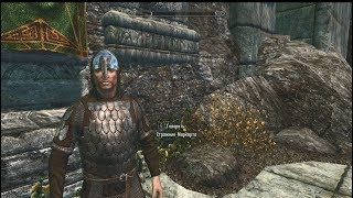 Skyrim Yet Another Guard Armor