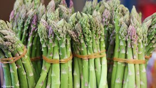 5 Most Expensive Vegetables in the World