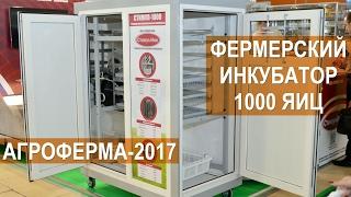 "Инкубатор ""Стимул 1000-П"" (куриный лоток) от компании НПО ""Стимул-Инк"" - видео"