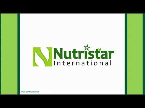 Basacote Plus 12M Fertilizers