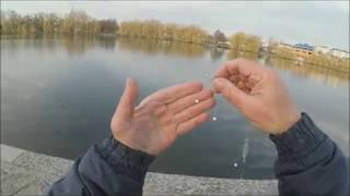 Какая рыба ловится на пенопласт