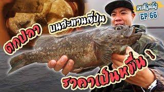 ตกปลา..บนสะพานญี่ปุ่น ราคาเป็นหมื่น!!! [หัวครัวทัวร์ริ่ง] EP.66