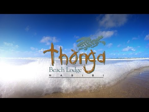 Welcome to Thonga Beach Lodge