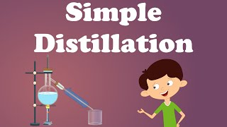 Simple Distillation | #aumsum #kids #science #education #children