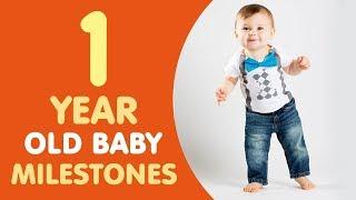 1 Year Old Baby Milestones