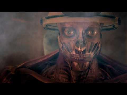 Тело человека Грани возможного ЗРЕНИЕ (видео)