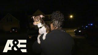 Live PD: Puppy Finder, Puppy Keeper (Season 3)   A&E