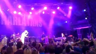 Impossible, The Charlatans Live at Delamere Forest (2013).