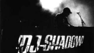 DJ Shadow - Give Me Back The Nights