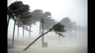 Как мы пережили ураган Ирма