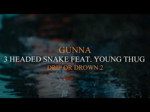 Gunna 3 Headed Snake Feat Young Thug Official Audio