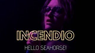 Hello Seahorse!   Incendio (Video Oficial)
