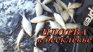 Рыбалка в омске на рэбе