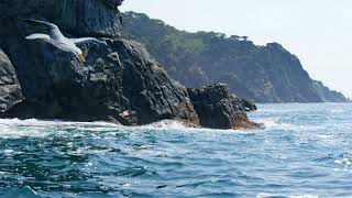Красивые морские пейзажи в фото/@МарияСОБАКАРЕВА/Приморский кр/ДальнийВосток