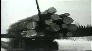 vintage canadian logging
