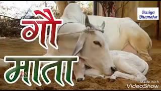 Gau Mata Song     Latest Hit Bhajan 2018   