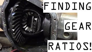 How to find axle gear ratio
